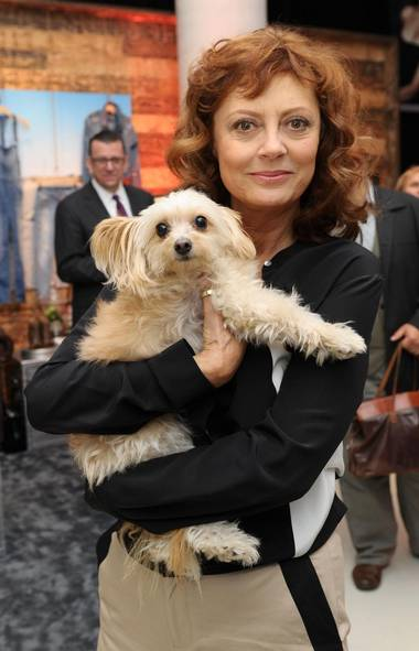 Even Susan Sarandon's dog gets into better places than you do at the Toronto International Film Festival. (Charles Leonio/Getty Images)
