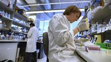 Alevtina Pavlenco, works with antibodies in the Sidhu lab, part of the Donnelly Centre for Cellular and Biomolecular Research at the University of Toronto. The lab's aim is to create biological substances that could lead new classes of drugs for a range of diseases.