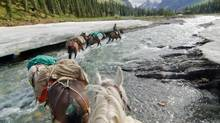 Crossing the Chischa River in Muskwa-Kechika. Even in late June, vast pans of snow remain on the shady banks. (Bruce Kirkby)