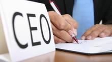 Corporate leadership. (dagmar heymans/Dagmar Heymans/iStockphoto)