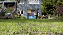 A grass paving system developed by German company Ground Solutions from recycled plastics allows the grass to grow on the driveway of Silke Rudelbach's home in Toronto. (Fernando Morales/The Globe and Mail)