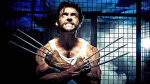 Wolverine's (Hugh Jackman) berserker rage unleashes his adamantium claws in X-Men Origins: Wolverine. Twentieth Century Fox went berserk when the movie leaked online a month before its release date.
