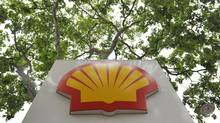A Royal Dutch Shell PLC logo is seen under a canopy of trees at a petrol station in central London July 29, 2010. (Toby Melville/Reuters)