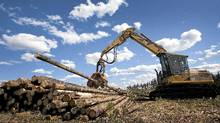 A logging operation in Williams Lake, B.C. (JOHN LEHMANN/The Globe and Mail)