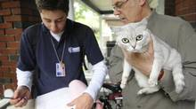 University student Jonathan Matson, left, speaks with Chris Terry and his cat Isis in this June 4, 2008 file photo. Mr. Matson was one of a number of students who went door to door for animal services to inform pet owners about the city's licensing. (Kevin Van Paassen/The Globe and Mail/Kevin Van Paassen/The Globe and Mail)