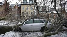 A tree limb rests on the roof of a car in the Cabbage Town neighbourhood following the weekend ice storm in Toronto. (Kevin Van Paassen/The Globe and Mail)