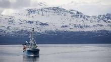 The University of Tromso's research vessel Lance follows U.S. Secretary of State Hillary Clinton and Minister of Foreign Affairs Jonas Gahr Stoere's tour of a fjord onboard the Arctic research vessel Helmer Hanssen off the coast of Tromso June 2, 2012. (POOL/REUTERS)