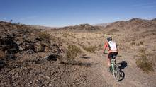 Ride through a geological fault zone; learn about plate tectonics and desert flora while getting a workout. (Darryl Leniuk/Darryl Leniuk)