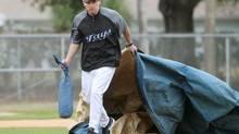 Former Toronto Blue Jays Cy Young-winning pitcher Pat Hentgen (Darren Calabrese/The Canadian Press)