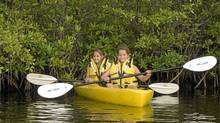 Summer camp is part of the much-lauded Ritz-Carlton Grand Cayman Ambassador of the Environment series. Classes are targeted to children, youth or families.