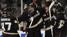 Anaheim Ducks celebrate after a goal by Anaheim Ducks right wing Teemu Selanne (8) against the Calgary Flames during the second period at Honda Center. (Kelvin Kuo/-USA TODAY Sports)