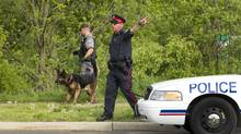 Police search in Montrose Abbey Park in Oakville where Hamilton and Halton police were investigating following the arrest of a second man in connection with the Tim Bosma murder investigation. (Peter Power/The Globe and Mail)