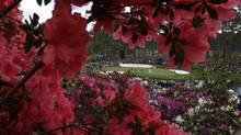 File photo of azaleas in bloom on the 16th hole during a practice round for the Masters golf tournament (HANS DERYK/REUTERS)