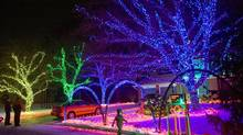 Martin Lindsay's house in Thornhill, Ont., has many different coloured Christmas lights. (JENNIFER ROBERTS For The Globe and Mail)