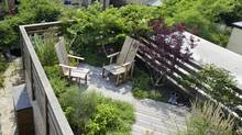 Enviro-conscious green roofs are among this season's biggest garden trends. This one was designed by Plant Specialists Inc., a New York firm co-owned by a former Torontonian. (Scott_Frances)