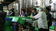 Steam Whistle breweries in Toronto makes hiring immigrants a priority. Eighteen per cent of its entire staff is made up of immigrants. (Charla Jones/Charla Jones/Globe and Mail)
