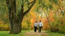 Admire the park setting in Edmonton's downtown core.
