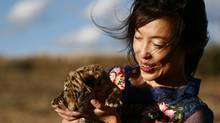 Li Quan, co-founder of the South China tiger project in South Africa. (Xinhua)