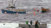 Fishermen pull their mackeral nets from the waters off Peggy's Cove, Nova Scotia. (ANDREW VAUGHAN/CP)