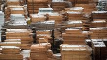 Naomi Christensen argues that it would be a mistake to assume Donald Trump will automatically be in the camp of the U.S. Lumber Coalition. (Darryl Dyck/The Canadian Press)