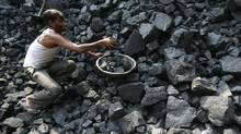A labourer works at a wholesale coal shop, which is a part of state-owned coal India, in Noida, northern Indian state of Uttar Pradesh October 19, 2010. (PARIVARTAN SHARMA/REUTERS)