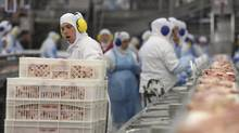 Workers prep poultry at the meatpacking company JBS, in Lapa, Brazil, Tuesday, in March 21, 2017. (Eraldo Peres/The Associated Press)