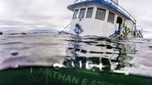 The tug boat Nathan E. Stewart is seen in the waters of the Seaforth Channel near Bella Bella, B.C., in an October 23, 2016, handout photo. (April Bencze/Heiltsuk First Nation/THE CANADIAN PRESS)