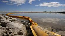 A boom stretches out to contain a pipeline leak on the Gleniffer reservoir near Innisfail, Alta., on Tuesday, June 12, 2012. Plains Midstream Canada says one of their non-functioning pipelines leaked between 1,000-3,000 barrels of sour crude near Sundre, Alta., on June 7 and flowed downstream in the Red Deer river to the reservoir. (JEFF McINTOSH/THE CANADIAN PRESS)