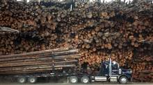 Logging truck. (Ray Giguere/Globe and Mail files)