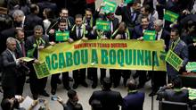 Lower house members who support the impeachment demonstrate during a session to review the request for Brazilian President Dilma Rousseff's impeachment in Brasilia, Brazil, on April 15, 2016. (UESLEI MARCELINO/REUTERS)