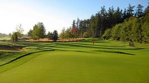 Victoria's Cordova Bay Golf Course is a birdwatching paradise.