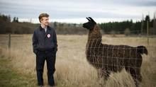Terry McNeice sees a tale of two Surreys: A gritty part, and parts with rural charm, including a farm for llamas and horses. (Rafal Gerszak for the globe and mail)