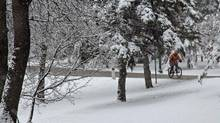 Cold weather does not deter dedicated cyclists! Shot at Kildonan Park in Winnipeg, MB. (James Lazar/James Lazar)