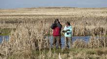 Murray Gillespie, a waterfowl biologist with Enviorment Canada and the Canadian Wildlife Service and his summer student Michele Chupik survey duck populations on a wetland east of Calgary on May 11, 2013. (Chris Bolin for The Globe and Mail)