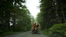 Red Cedar that was cut down on a logging truck near Duncan, B.C. on Vancouver island June 21, 2012. (John Lehmann/The Globe and Mail)