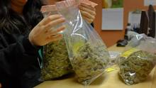 Under the current medical-marijuana framework, patients buying pot from Health Canada's mail-order system must pay HST or GST on these products and then claim these levies as medical expenses. (Matthew Staver/Bloomberg)