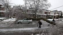 Pedestrians walk under a large tree that fell on Chester Street in Toronto on Dec. 22, 2013 early Sunday morning the ice storm. Approximately 250,000 people were without power after the storm. (Deborah Baic/The Globe and Mail)