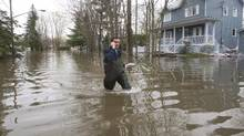 A man makes his way through the flooded streets in Laval, Que., on May 10, 2017. Even as swollen rivers have receded in Quebec, some experts suggest historic flooding this year could mean critter and pest-related woes in months and years to come. (Ryan Remiorz/THE CANADIAN PRESS)