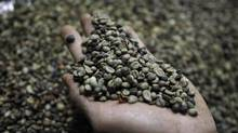 A worker sifts coffee beans at a processing factory of the coffee trader Atlantic Commodities in Bao Loc, near Ho Chi Minh city. (KHAM/REUTERS)