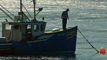 A fisherman checks the lines on his fishing boat in Tiverton, N.S. on July 19, 2010. (PAUL DARROW/Paul Darrow for The Globe and Mail)
