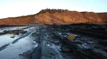 Views at the Joggins Fossil Cliffs at sunset. The Cliff is one of the few sites of significant fossil discoveries in Nova Scotia, where a man accidentally made the biggest discovery ever this week. (Wally Hayes)