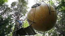 Tom Chudleigh, left, rents out his hand-built wooden tree spheres at his property near Qualicum Beach on Vancouver Island, BC. (Deddeda Stemler for The Globe and Mail)