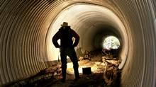 John Buchanan stands in a tunnel built for wildlife to pass under the highway near Squamish, B.C. (JOHN LEHMANN/JOHN LEHMANN/THE GLOBE AND MAIL)