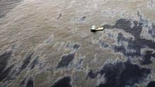 Prosecutors seeking $20-billion (U.S.) in damages over the 3,600-barrel oil spill last November sought the operating ban against Transocean to ensure payment. (Transocean/REUTERS)