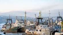 A picture taken 21 February 2006 shows trawlers from the Murmansk fleet in the port, waiting the next fishing expedition. (Dario Thuburn/AFP/Getty Images/Dario Thuburn/AFP/Getty Images)