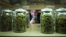 Rocco Dipopolo at his medical marijuana shop on Commercial Dr. in Vancouver January 20, 2016. (John Lehmann/The Globe and Mail)