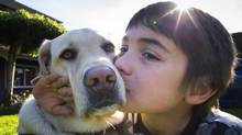 Jason Gubbels, an eight-year old boy who has autism, with Echo, an autism support dog, at their home Richmond, B.C. on April 29, 2014. (John Lehmann/The Globe and Mail)
