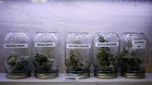 Marijuana products on display at Trees Dispensary in Victoria. (CHAD HIPOLITO/THE GLOBE AND MAIL)