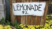 Not long ago, my three kids approached me about setting up a lemonade stand at the corner of our street. Our discussions brought me back to the basics of business.