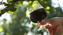 glass of wine (DimaSobko/Getty Images/iStockphoto)